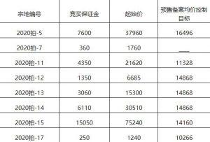 住宅11.31億元競得福建龍岩1宗住宅用地 溢價率50.39%_新古典家具