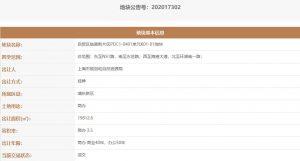 上海臨港片區21.35億元出讓5宗地塊 光明地產1.21億元競得1宗_空間設計推薦